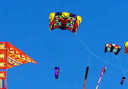 Kites Over Lake Michigan moves inland